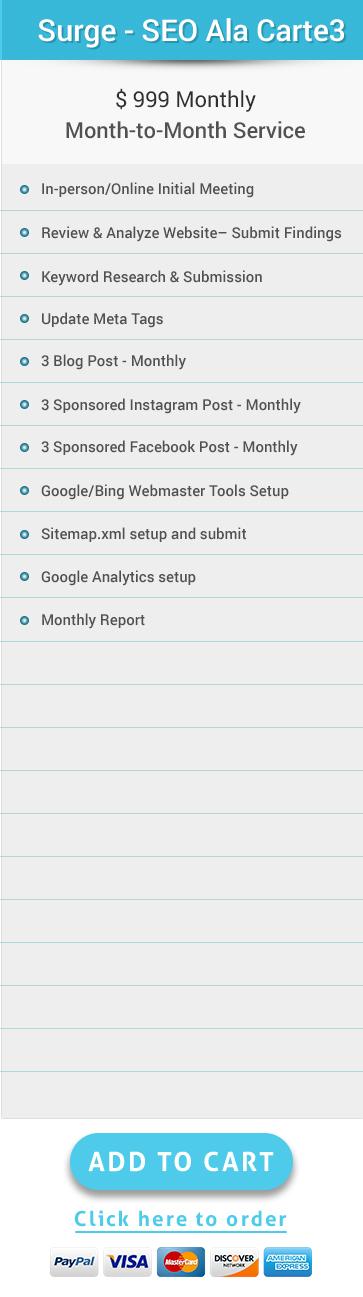 Search Engine Optimization Ala Carte